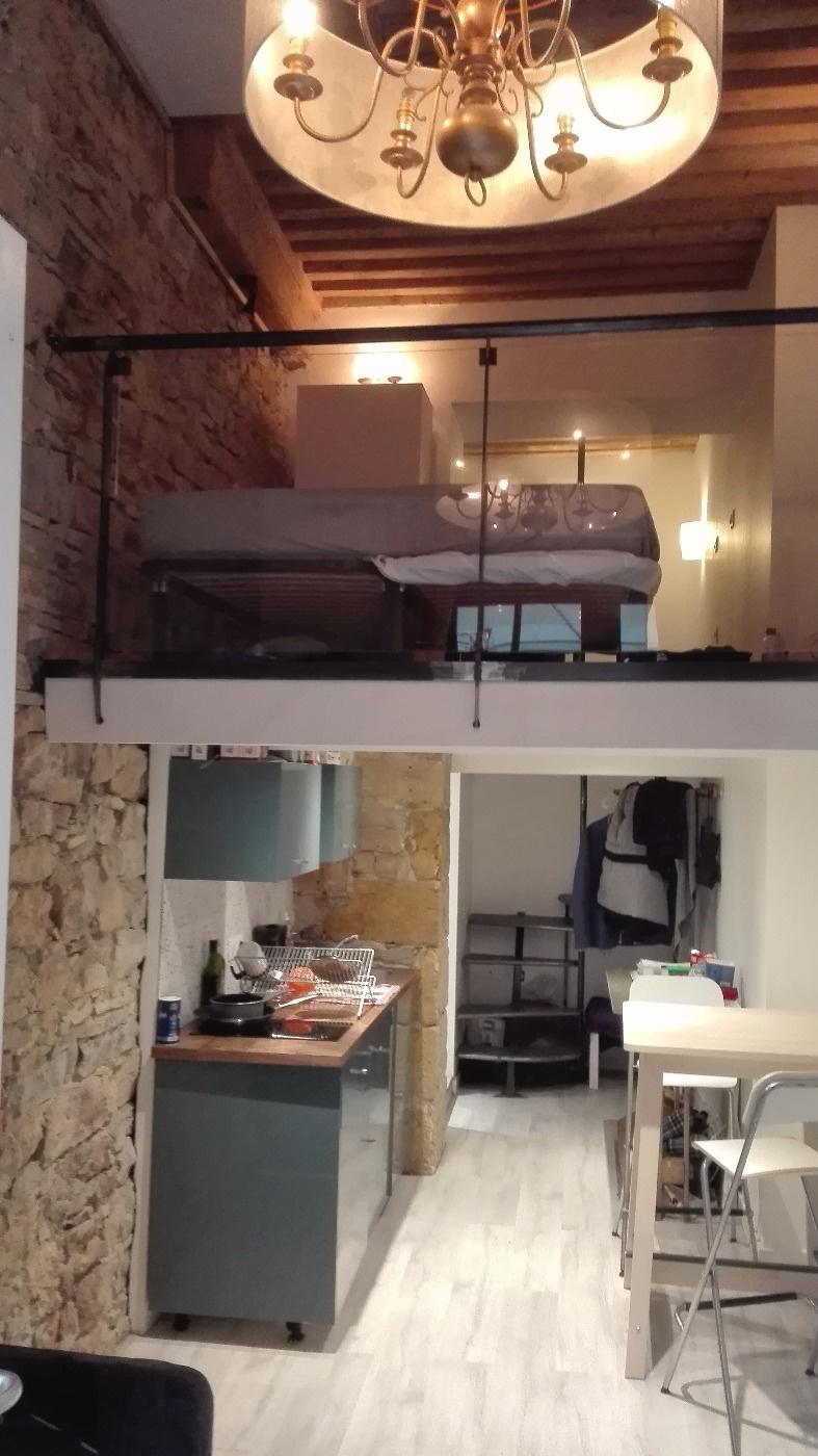 Annonce location appartement lyon 2 35 m 650 for Appartement a louer meuble lyon